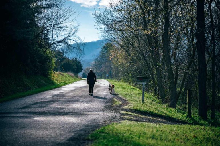 Why being active matters